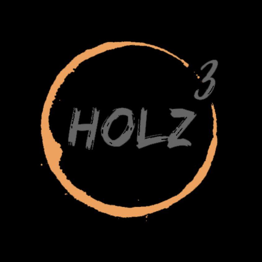 Logo Holz³