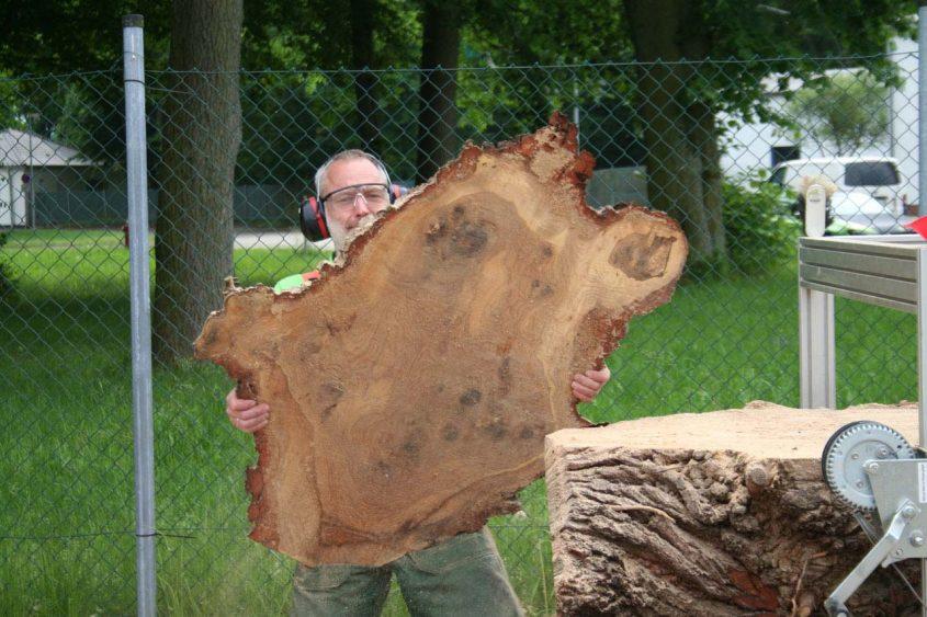 Urstoff Holz